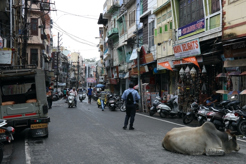 f:id:travellingaroundindia:20200215140800j:plain