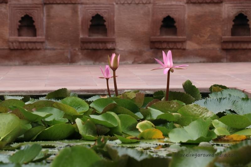 f:id:travellingaroundindia:20200221152917j:plain