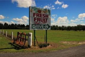 フレッシュフルーツの看板