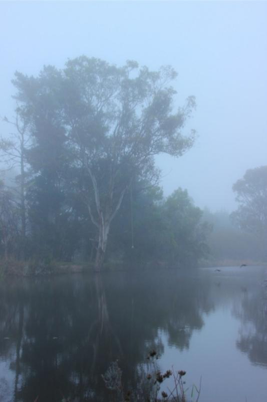 スタンソープの早朝の霧