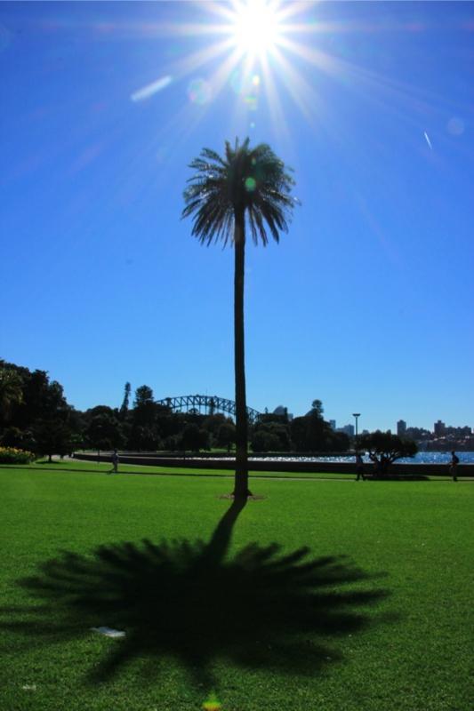 ボタニックガーデン(Royal Botanic Gardens, Sydney)