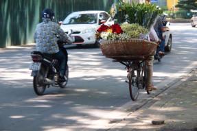 重そうな花を自転車で運ぶ女性