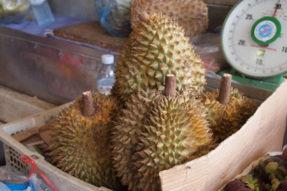 カンボジアのフルーツ(ドリアン)