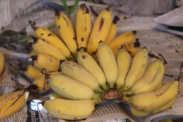 カンボジアのバナナ
