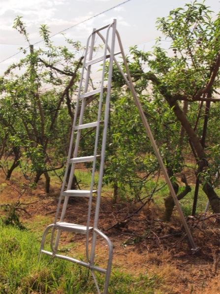ファームの重いはしご