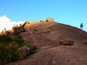 Girraween National Parkで語り合うTatsuとイェレ