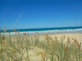 サンシャインコーストの海辺