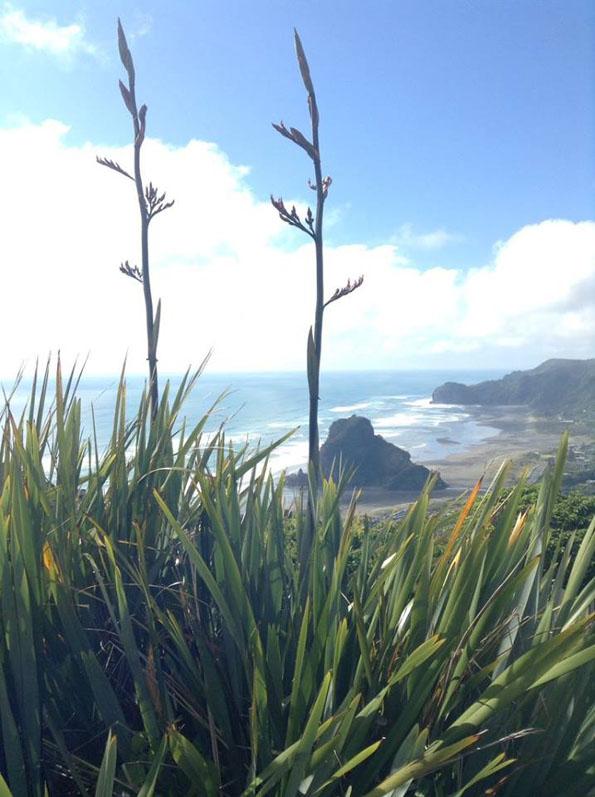 ピハ・ビーチ(Piha Beach)のライオンロック(Lion Rock)
