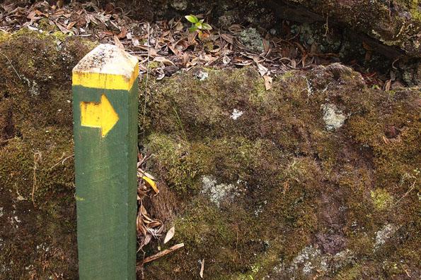 ランギトト島の道標