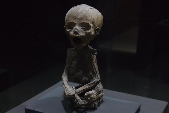 メキシコ・グアナファトのミイラ博物館の赤ちゃんミイラ