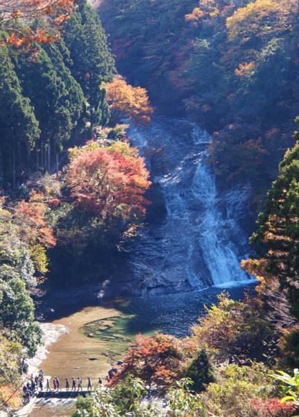 養老渓谷の紅葉・粟又の滝