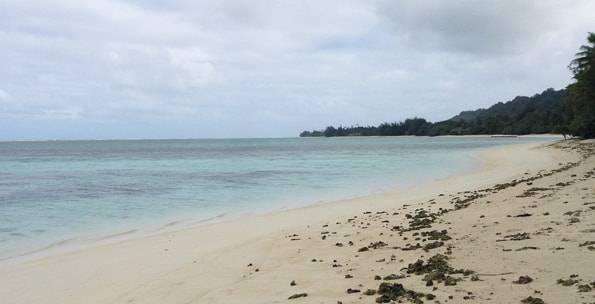 ラロトンガ島のビーチ
