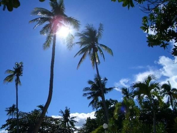 フィリピン/セブ島