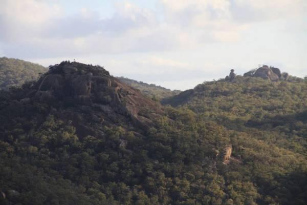 オーストラリア・スタンソープのギラウィーン国立公園(Girraween National Park)