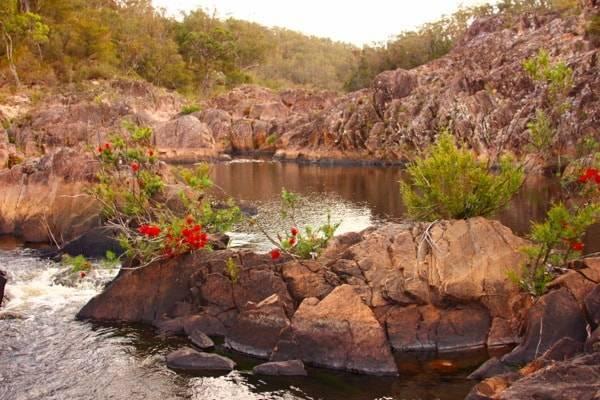 スタンソープ観光・ブーヌーブーヌー国立公園(Boonoo Boonoo National Park)