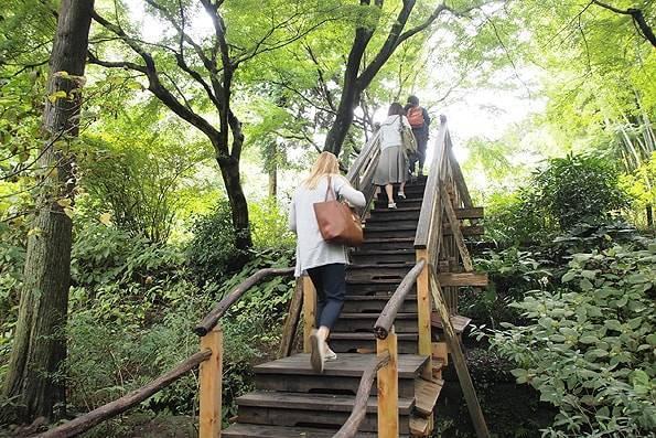 鎌倉明月院(あじさい寺)