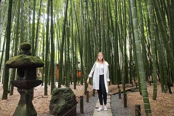 鎌倉の報国寺(竹寺)