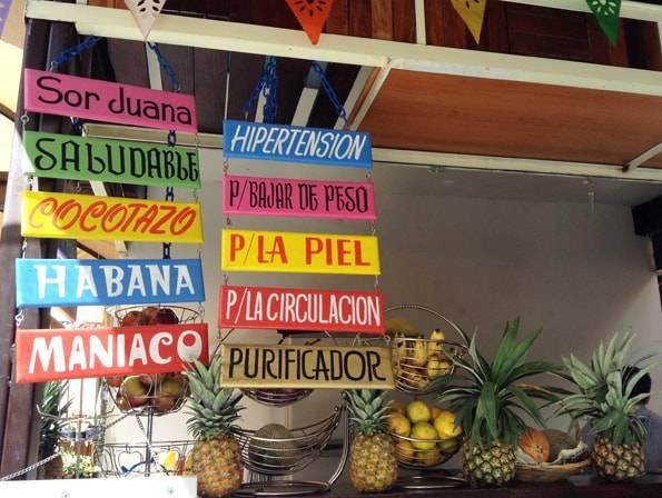 オーガニックマーケット(The Rayón Pochote Organic Market)