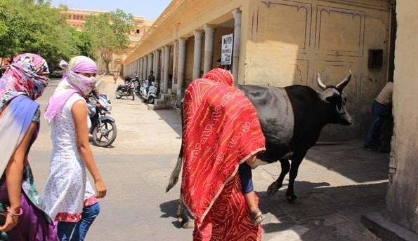 インドのジャイプール観光
