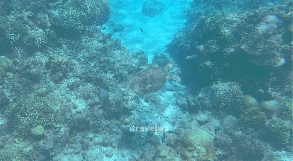 f:id:travelwz:20160227120133j:image