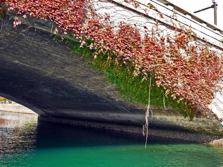 f:id:travelyokohama:20161130112959j:plain