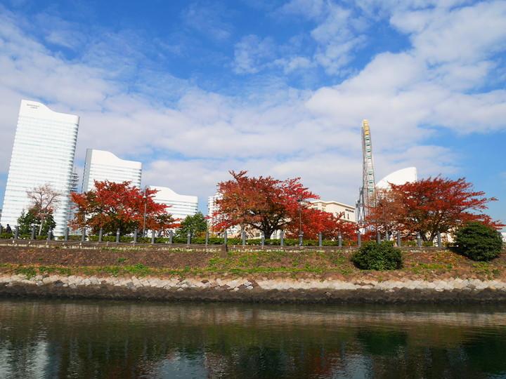f:id:travelyokohama:20161130113019j:plain