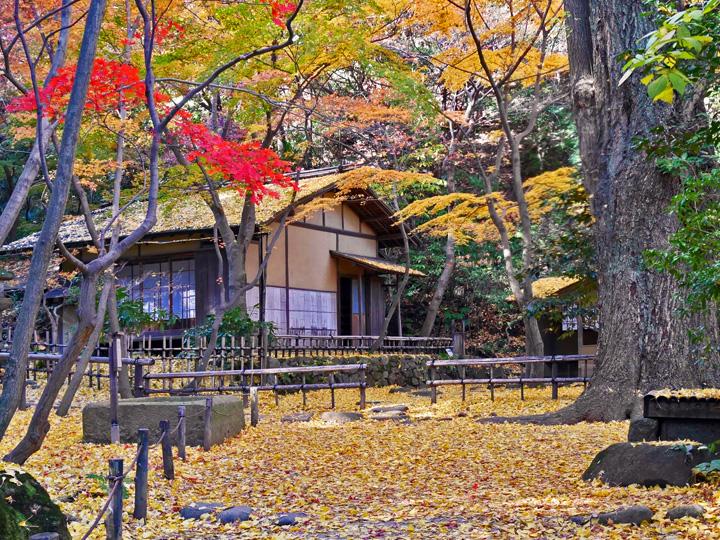 f:id:travelyokohama:20161209153204j:plain