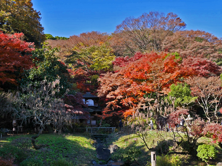 f:id:travelyokohama:20161209153341j:plain