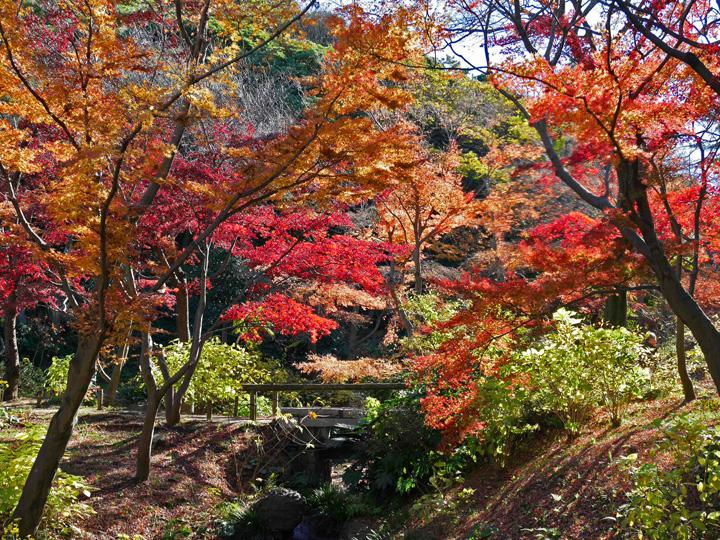 f:id:travelyokohama:20161209153419j:plain