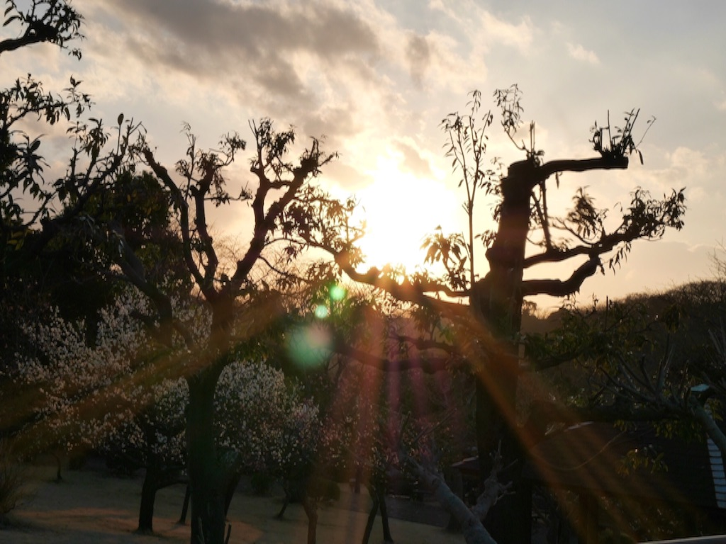 f:id:travelyokohama:20170218232213j:image