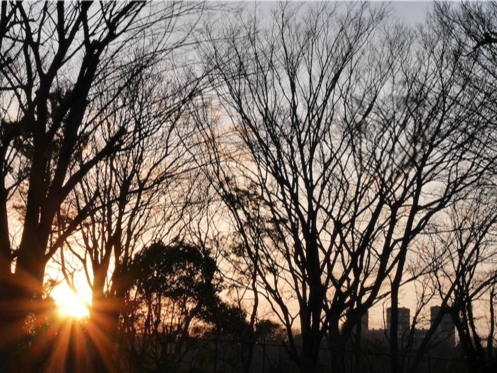 f:id:travelyokohama:20170218232300j:image