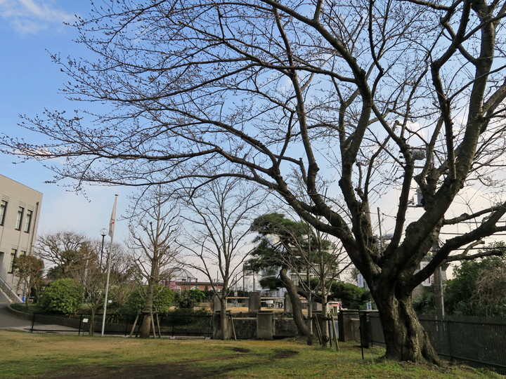 f:id:travelyokohama:20170502000836j:plain