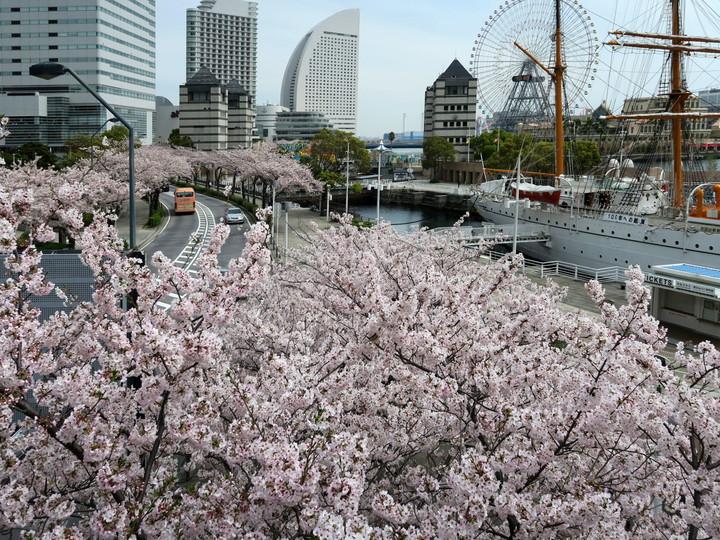 f:id:travelyokohama:20170502004102j:plain