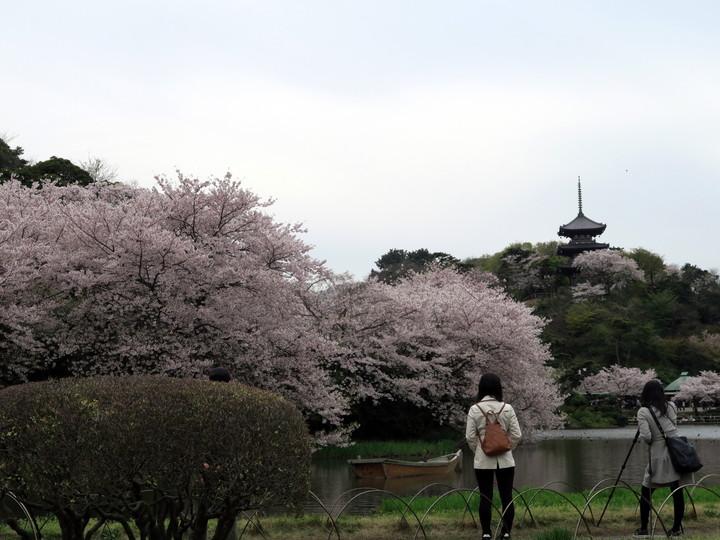 f:id:travelyokohama:20170502004134j:plain