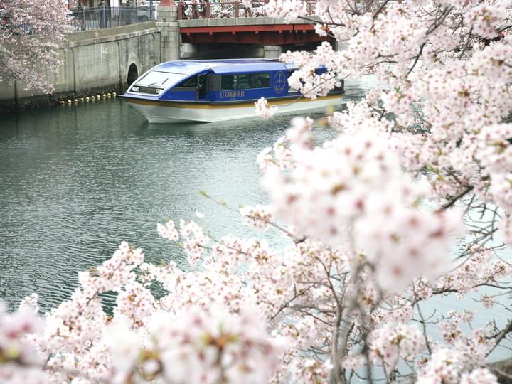 f:id:travelyokohama:20180403183206j:plain