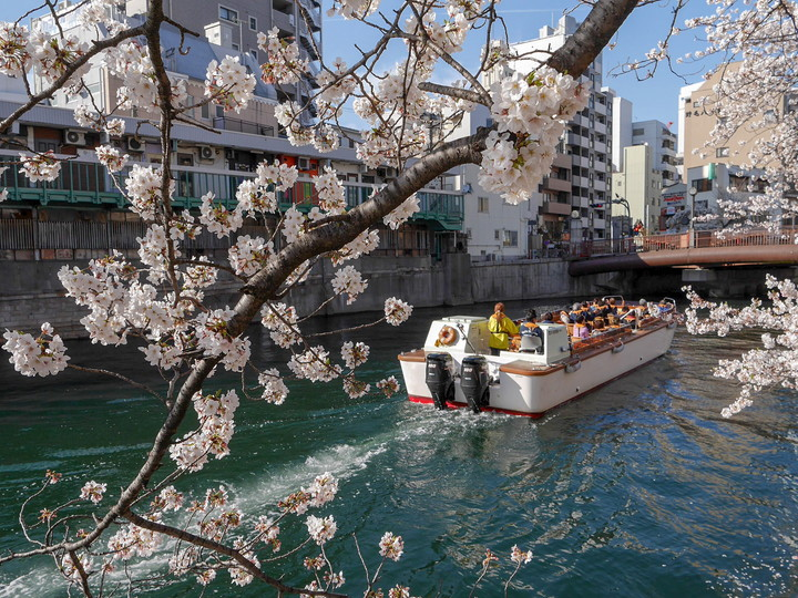 f:id:travelyokohama:20190409015842j:plain