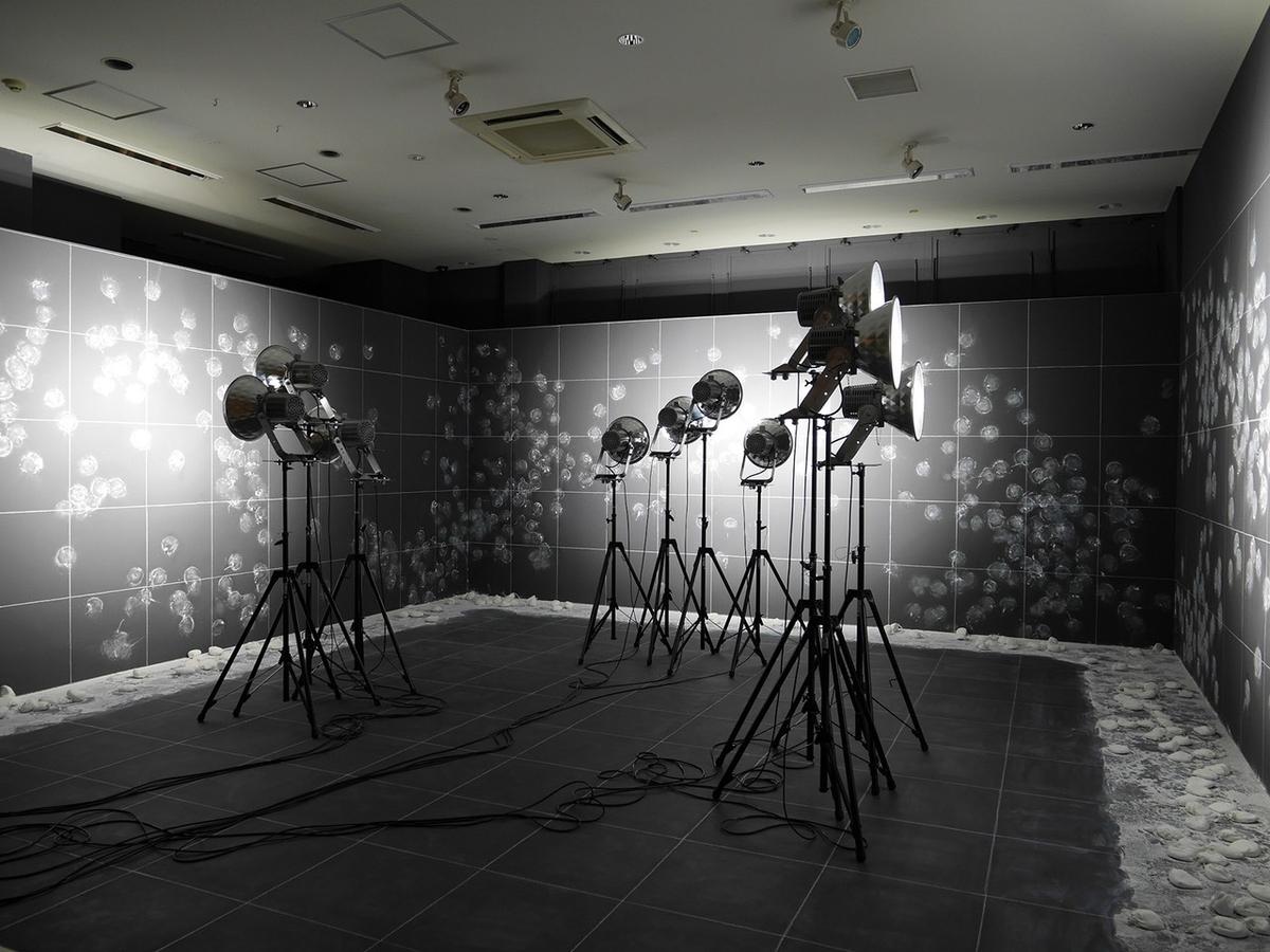 ヨコハマトリエンナーレ2020展示風景より ハイグ・アイヴァジアン《1、2、3 ソレイユ!》2020