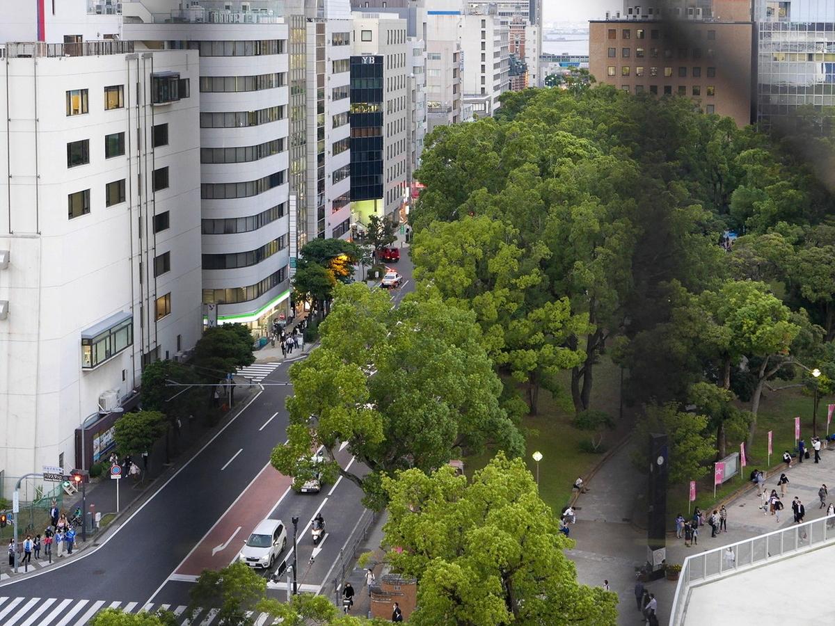 横浜スタジアム レフトウイング席 最上部からの眺め