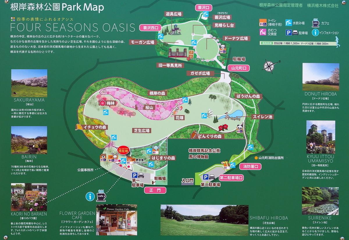 根岸森林公園 マップ