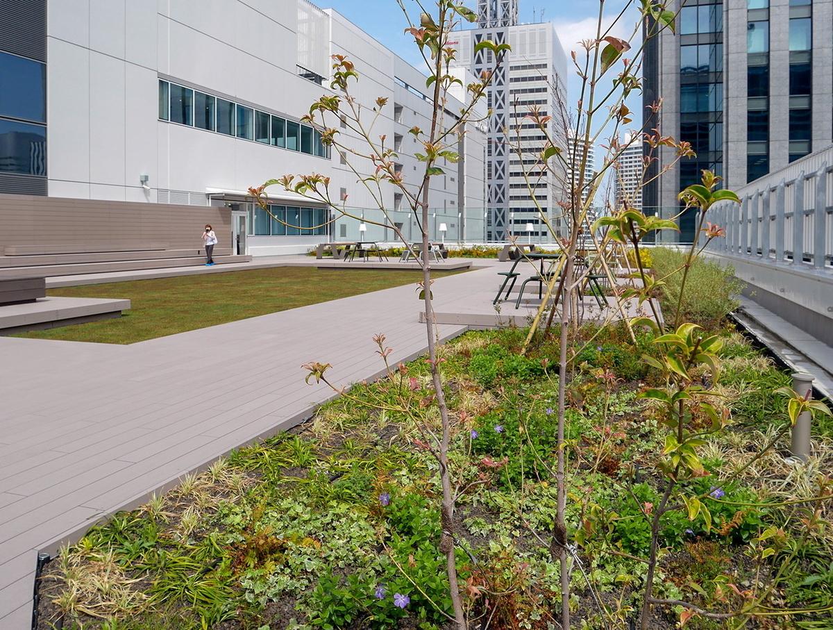 敷地の5%以上を緑化