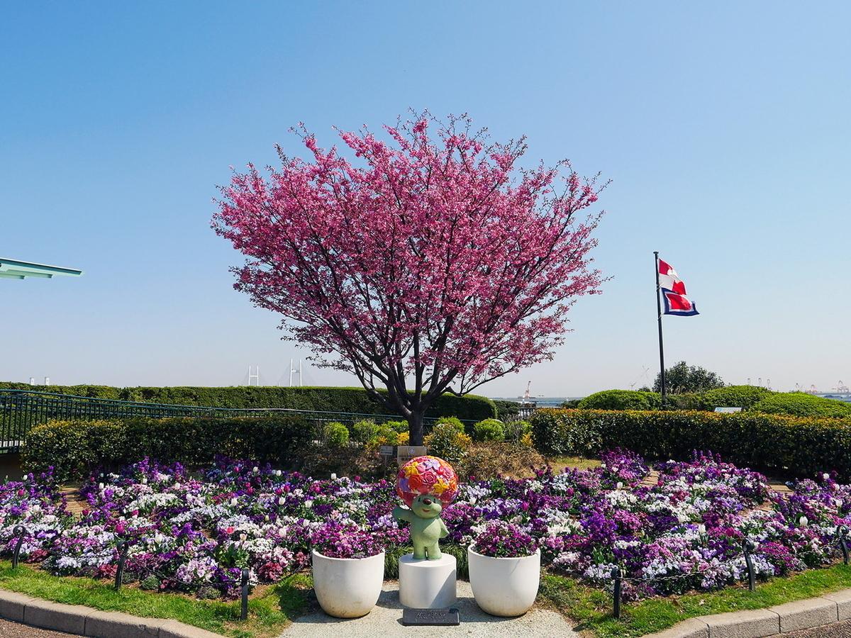 港の見える丘公園の桜(2021年3月26日撮影)