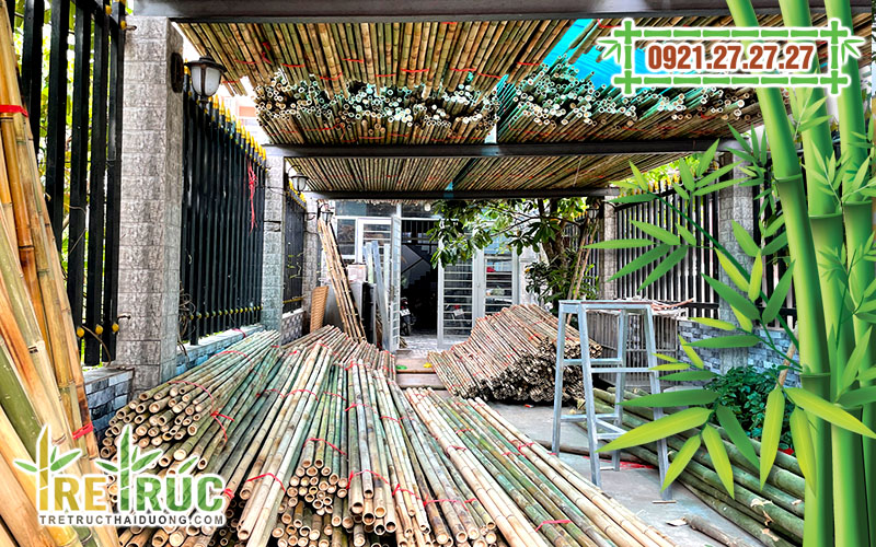 f:id:tretructhaiduong:20210317124459j:plain