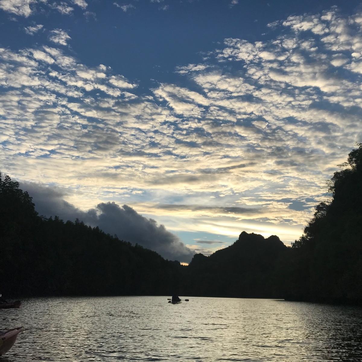 ランカウイ島のマングローブ(夕方)