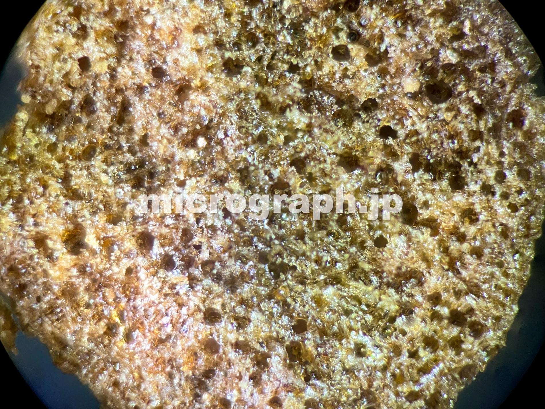 インスタントコーヒーの顕微鏡写真(対物10倍)