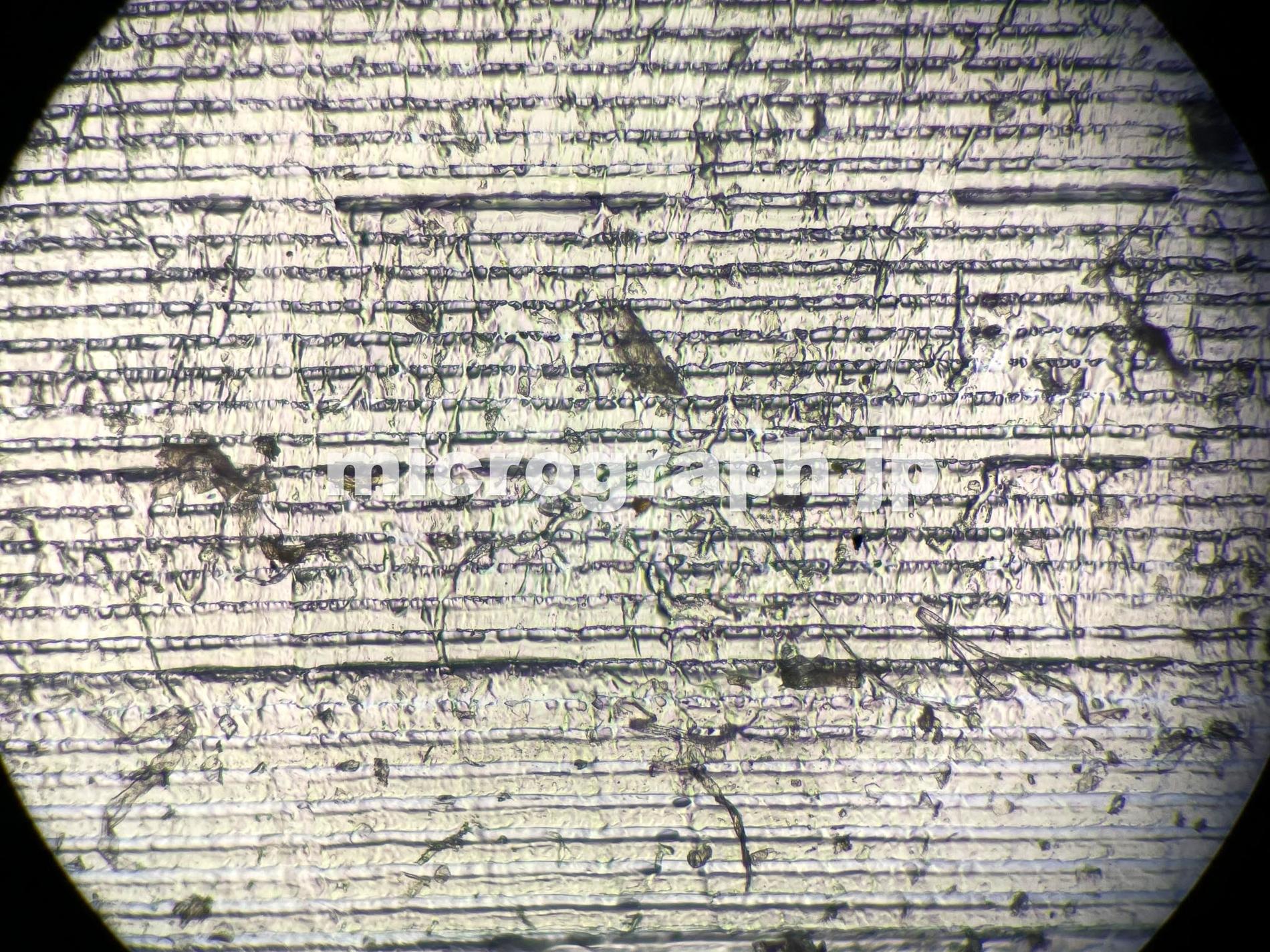 セロテープの顕微鏡写真