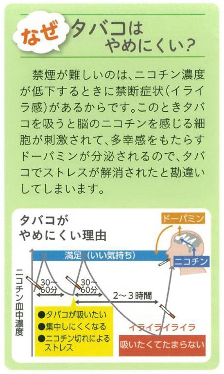 f:id:trich-japan:20171008120204j:plain