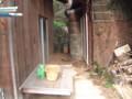[山口の家][宇賀本郷][豊浦町]