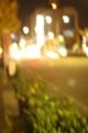 [夜][京都市]
