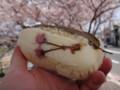 [京都][出町柳][桜][食][food]