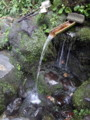 [新潟][長岡市][杜々の森][湧水][名水][名水百選]